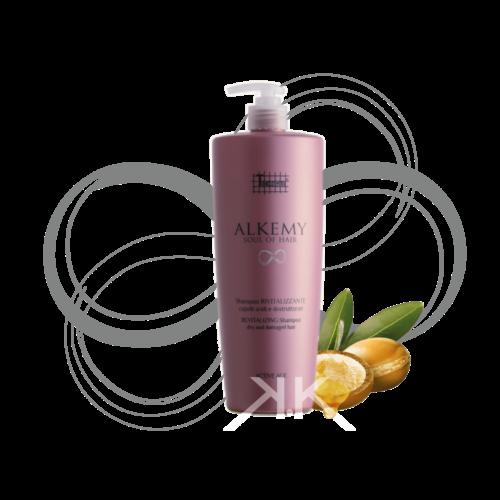 OK tecnique alkemy shampoo rivitalizzante Tavola disegno 1 1