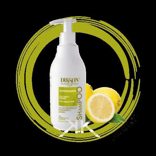 antigrasso capelli grassi.shampoo 500ml Tavola disegno 1