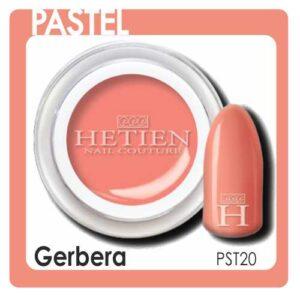Gerbera PST20 7ml
