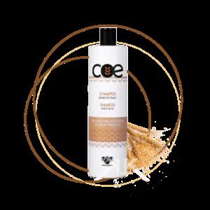 shampoo germe di grano linea italiana Tavola disegno 1