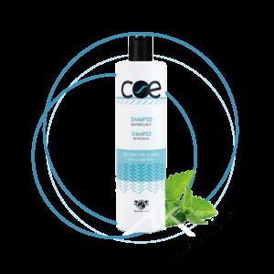 shampoo rinfrescante linea italiana Tavola disegno 1