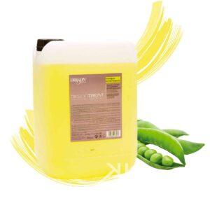 dikson tanica shampoo ristrutturante 10kg tanica